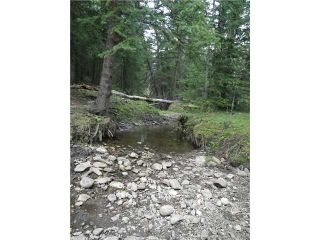 Photo 2: 2 miles west of Dartique Hall in COCHRANE: Rural Rocky View MD Rural Land for sale : MLS®# C3545361