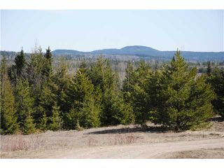 """Photo 9: 5350 SEABROOKE PIT Road in Quesnel: Quesnel - Rural North House for sale in """"TEN MILE LAKE"""" (Quesnel (Zone 28))  : MLS®# N214729"""