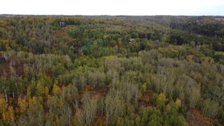 Photo 20: Hwy 11 & RR 53: Rural Parkland County Rural Land/Vacant Lot for sale : MLS®# E4265869