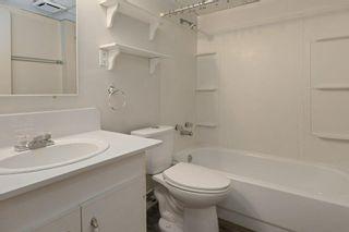 Photo 19: 13327 25 Street in Edmonton: Zone 35 House for sale : MLS®# E4252255