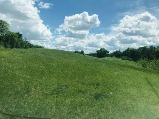 Photo 7: 51315 RR262 Road: Rural Parkland County Rural Land/Vacant Lot for sale : MLS®# E4235816