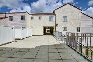 Photo 25: 139 LANCASTER Terrace in Edmonton: Zone 27 Townhouse for sale : MLS®# E4253109