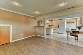 Photo 22: 703 Alderwood Place SE in Calgary: Acadia Detached for sale : MLS®# A1131581