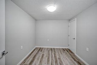 Photo 24: 39 Aberdare Road NE in Calgary: Abbeydale Detached for sale : MLS®# A1127004