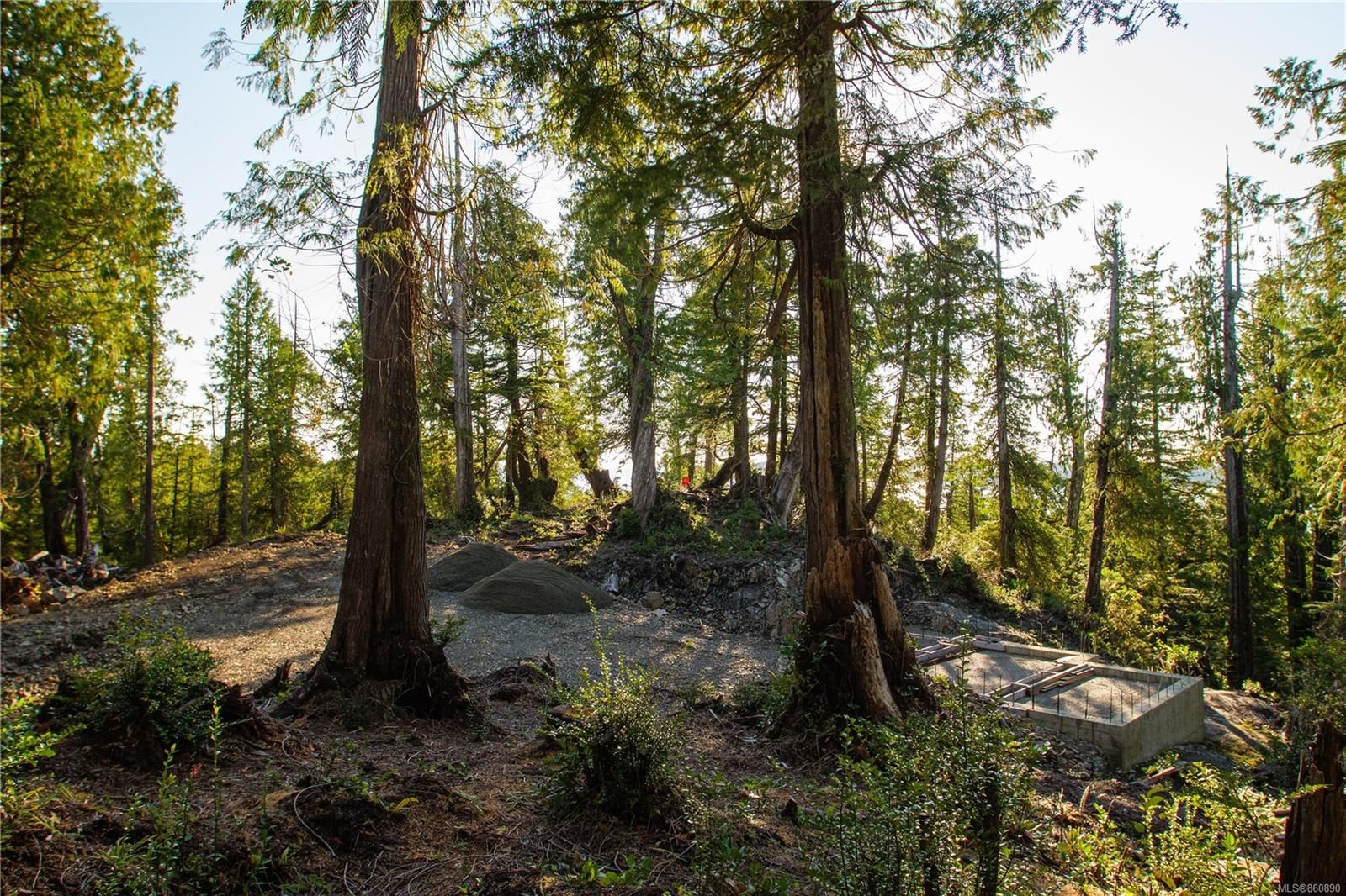 Photo 9: Photos: LOT 1 Tonquin Park Rd in : PA Tofino Land for sale (Port Alberni)  : MLS®# 860890