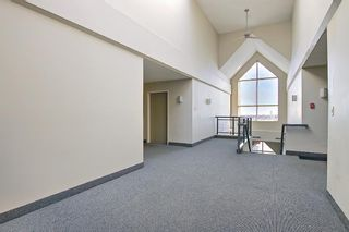 Photo 25: 6 210 Village Terrace SW in Calgary: Patterson Apartment for sale : MLS®# A1080449