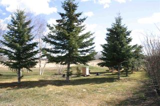 Photo 5: 27232 TWP RD 511: Rural Parkland County House for sale : MLS®# E4254971