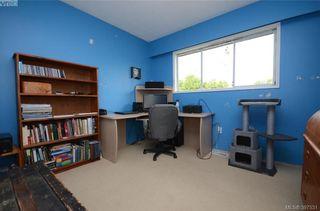 Photo 13: 7787 Wallace Dr in SAANICHTON: CS Saanichton House for sale (Central Saanich)  : MLS®# 795175