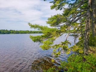 Photo 19: Lot 101 Dorey Mills Road in Clearland: 405-Lunenburg County Vacant Land for sale (South Shore)  : MLS®# 202119645