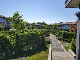 """Photo 36: 40 2603 162 Street in Surrey: Grandview Surrey Townhouse for sale in """"VINTERRA at Morgan Heights"""" (South Surrey White Rock)  : MLS®# R2604725"""