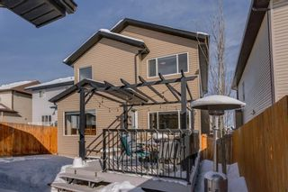 Photo 47: 119 ELGIN MEADOWS Way SE in Calgary: McKenzie Towne Detached for sale : MLS®# A1067731