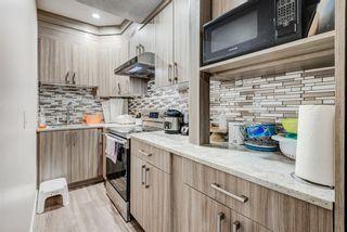 Photo 49: 102 Saddlelake Way NE in Calgary: Saddle Ridge Detached for sale : MLS®# A1092455
