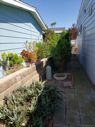 Photo 37: CARLSBAD WEST Mobile Home for sale : 2 bedrooms : 7004 San Carlos St #67 in Carlsbad