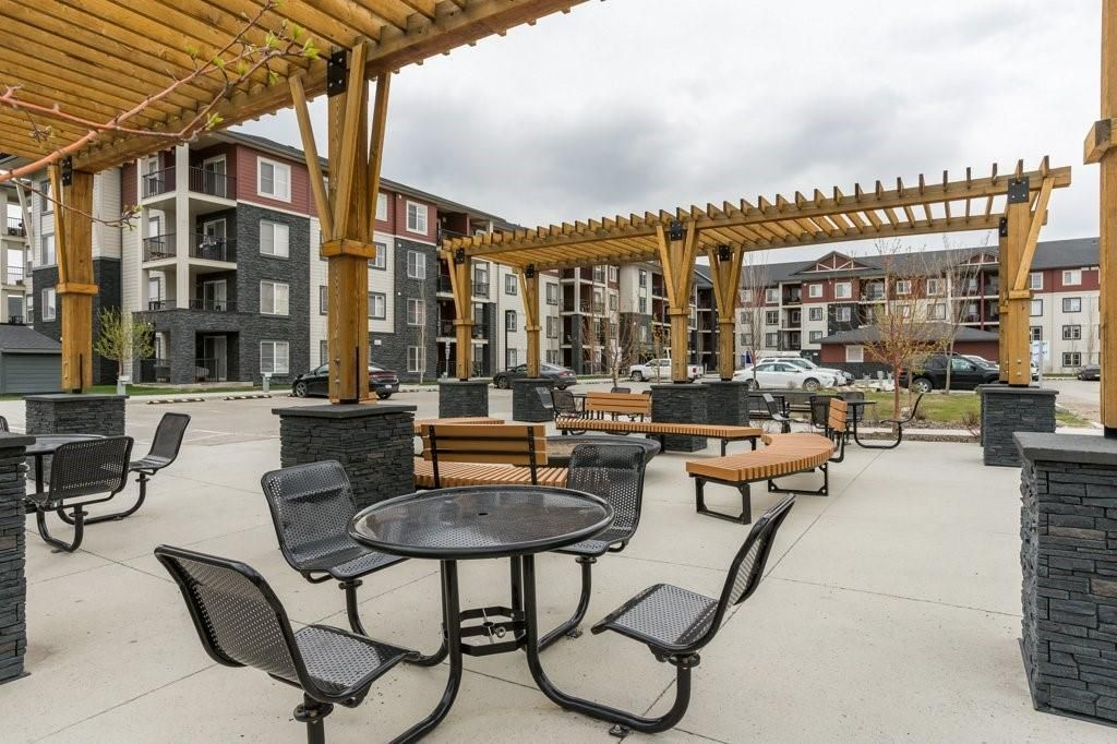 Shared Outdoor Space