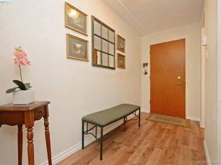 Photo 16: 105 415 Linden Ave in VICTORIA: Vi Fairfield West Condo for sale (Victoria)  : MLS®# 790250