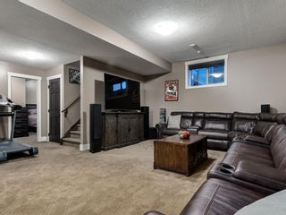 Photo 33: 300 SUNSET Heights: Crossfield Detached for sale : MLS®# A1010820