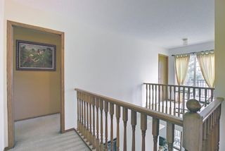 Photo 30: 18388 Chaparral Street SE in Calgary: Chaparral Detached for sale : MLS®# A1113295