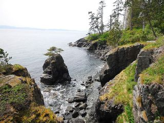 Photo 16: 2470 Lighthouse Point Rd in Sooke: Sk French Beach House for sale : MLS®# 867503