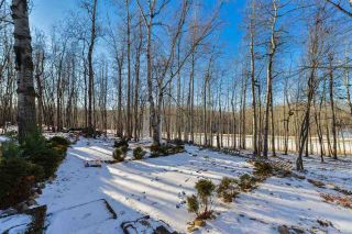 Photo 7: 30 54129 RGE RD 275: Rural Parkland County House for sale : MLS®# E4226059