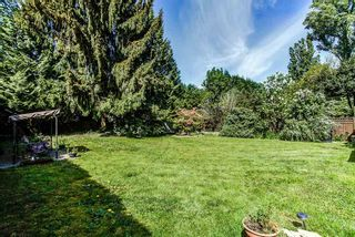 Photo 16: 11735 MORRIS Street in Maple Ridge: West Central House for sale : MLS®# R2060082
