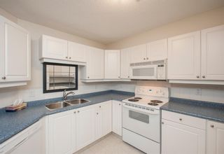 Photo 16: 1111 Millrise Point SW in Calgary: Millrise Apartment for sale : MLS®# A1043747