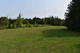 Photo 7: 253036 9th Line in Amaranth: Rural Amaranth House (Bungalow) for sale : MLS®# X5346288