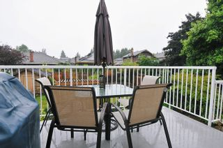 Photo 11: 23146 PEACH TREE Court in Maple Ridge: East Central House for sale : MLS®# V920655