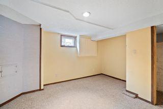 Photo 36: 3162 Alder St in : Vi Mayfair House for sale (Victoria)  : MLS®# 856060