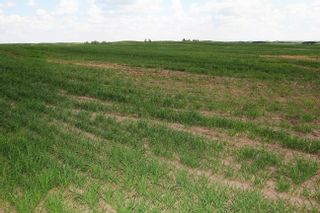 Photo 5: Twp Rd 592 Rg Rd 112: Rural St. Paul County Rural Land/Vacant Lot for sale : MLS®# E4263379