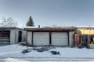 Photo 48: 3812 49 Street NE in Calgary: Whitehorn Detached for sale : MLS®# A1054455