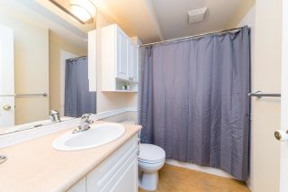 Photo 33: 2027 FRAMES Court in North Vancouver: Indian River House for sale : MLS®# R2624934