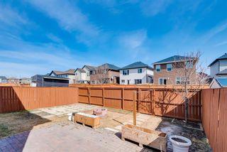 Photo 37: 137 Saddletree Close NE in Calgary: Saddle Ridge Detached for sale : MLS®# A1091689