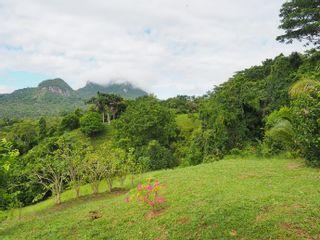 Photo 42: Trinity Hills Valley, Panama