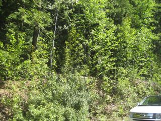Photo 5: Lot 23 Vickers Trail in Anglemont: Land Only for sale : MLS®# 10011652
