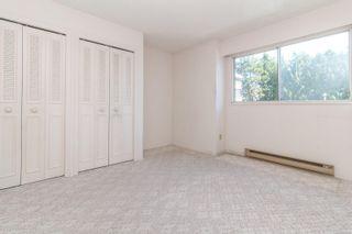 Photo 9: 202 1525 Hillside Ave in : Vi Oaklands Condo for sale (Victoria)  : MLS®# 860666