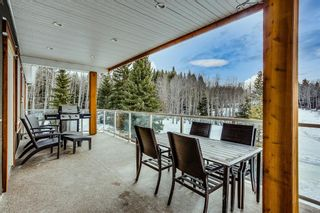 Photo 11: 282036 Range Road 43 in Rural Rocky View County: Rural Rocky View MD Detached for sale : MLS®# A1075263