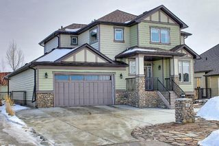 Main Photo: 16 Cimarron Estates Manor: Okotoks Detached for sale : MLS®# A1072719