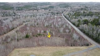 Photo 5: Lot 7 Powell Road in Little Harbour: 108-Rural Pictou County Vacant Land for sale (Northern Region)  : MLS®# 202109707