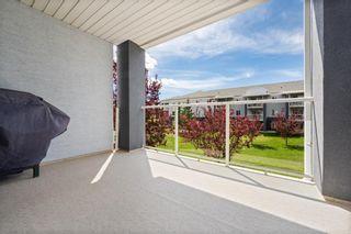 Photo 4: 4205 2280 68 Street NE in Calgary: Monterey Park Apartment for sale : MLS®# A1143228