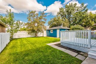 Photo 40: 78 Franklin Drive in Calgary: Fairview Detached for sale : MLS®# A1142495