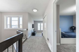 Photo 17: 8515 216 Street in Edmonton: Zone 58 House for sale : MLS®# E4264294