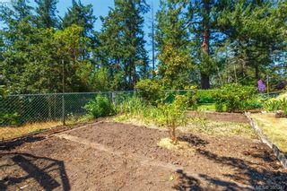 Photo 17: 4188 Bracken Ave in VICTORIA: SE Lake Hill House for sale (Saanich East)  : MLS®# 792670