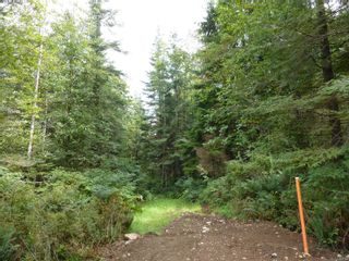 Photo 11: SL 16 950 HERIOT BAY Rd in : Isl Quadra Island Land for sale (Islands)  : MLS®# 853701