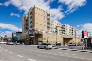 Photo 35: 315 3410 20 Street SW in Calgary: South Calgary Apartment for sale : MLS®# A1101709