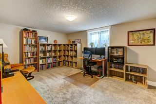 Photo 11: 4203 Dalhart Road NW in Calgary: Dalhousie Detached for sale : MLS®# A1143052