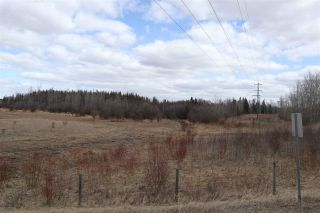 Photo 22: Twp 510 RR 33: Rural Leduc County Rural Land/Vacant Lot for sale : MLS®# E4239253