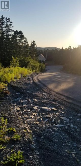 Photo 4: 18-24 Butts Road in Spaniard's Bay: Vacant Land for sale : MLS®# 1234275