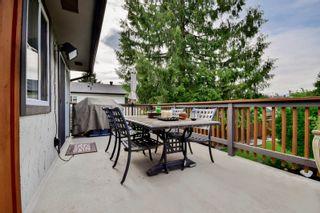 Photo 40: 20801 MCFARLANE Avenue in Maple Ridge: Southwest Maple Ridge House for sale : MLS®# R2065058