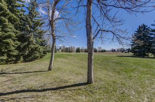 Photo 48: 20 Woodfield Road SW in Calgary: Woodbine Detached for sale : MLS®# A1100408