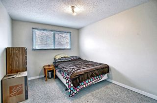 Photo 20: 1137 Berkley Drive NW in Calgary: Beddington Heights Semi Detached for sale : MLS®# A1136717